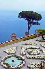 Villa Rufolo Gardens - terrace, umbrella pine and church domes