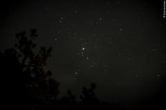 De aqu a la Luna (Sal Martnez // Photojournalist) Tags: california sky naturaleza nature forest dark de mexico star woods san sierra pedro bosque unam astronomy baja instituto martir astronoma