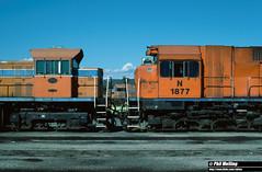 4 April 1994 L274 MA1863 N1877 Forrestfield Loco (RailWA) Tags: railwa philmelling westrail 1994 l274 ma1863 n1877 forrestfield loco