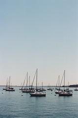 Boston Boats (Rachael.Robinson) Tags: boston urban waterfront water boats boat sail sailboats