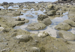 So Clean~  (Jia  ) Tags: sea water rock coast clean gf2 panasonic taiwan taipei        landscape