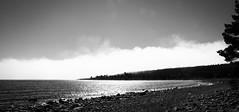 Cross the horizon (Ethion) Tags: fog norrfjllsviken sweden norrland horizon forest skog water ocean rocks weather