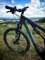 Afternoon Biking 3 (pjen) Tags: santacruz mtb finland nature forest summer carbon fullsuspension nordic boreal maastopyr pike 275 650b kashima trail am enduro woods laajavuori