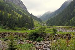 Zillergrund (Fozzman) Tags: summer vacations 2016 zillertal ziller valley alps alpen