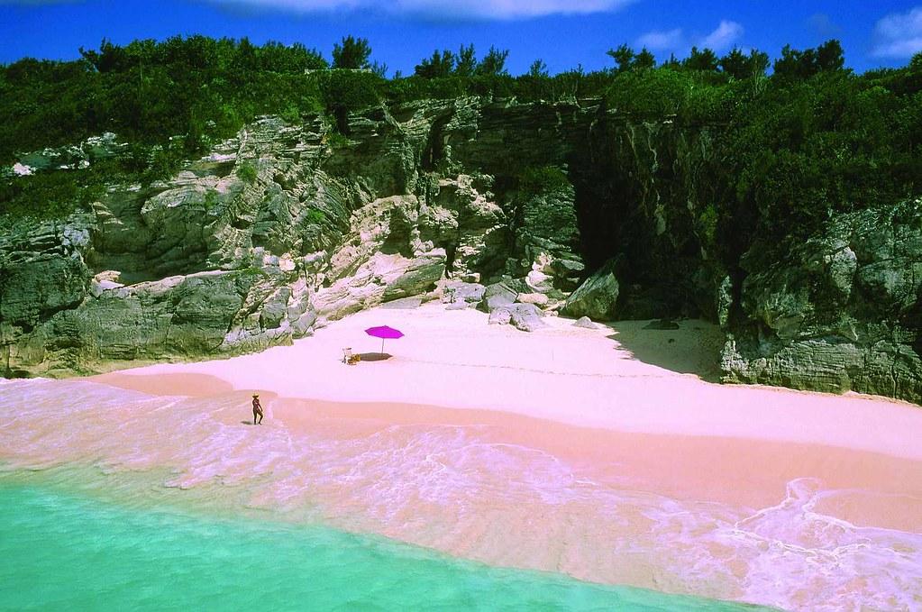 Bãi biển hồng
