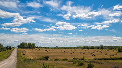 Bucolic beauty (John Getchel Photography) Tags: clouds michigan rural bucolic farm hayrolls millersburg unitedstates us