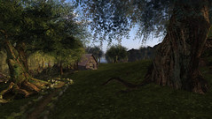 The path home (Teddi Beres) Tags: life sunset nature forest outdoors cabin woods image path sl second essentials