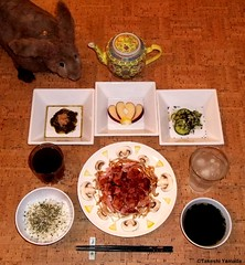 Seara (sea rabbit). Photograph by Dr. Takeshi Yamada.  20120314 015 Ham w Oyster Sauce, Mushrooms, Bean Sprouts, Lemon. Wakame Sp. SR with Parsely Frakes. Pickled Spinach w Bonito Frakes. PC w black sesami seeds. Apple. Black Tea. Water. (diningwithsearabbits02) Tags: ny newyork sexy celebrity art hat fashion animal brooklyn painting asian coneyisland japanese star costume tv google king artist dragon god cosplay manhattan wildlife famous gothic goth performance pop taxidermy cnn tuxedo bikini tophat unitednations playboy entertainer takeshi samurai genius mermaid amc mardigras salvadordali unicorn billclinton billgates aol vangogh curiosities sideshow jeffkoons globalwarming takashimurakami pablopicasso steampunk yamada damienhirst cryptozoology freakshow barackobama seara immortalized takeshiyamada museumofworldwonders roguetaxidermy searabbit ladygaga climategate minnesotaassociationofroguetaxidermists  leonardnimoyfood