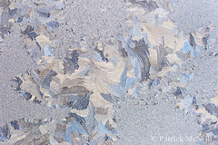 Frosty Morning (burntpixel.ca) Tags: blue winter canada abstract macro art ice water beautiful horizontal rural canon spectacular photo winnipeg pattern fine gray patrick manitoba photograph 6d canon6d wrench777