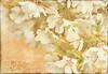 "Joy (Diana Thorold.) Tags: texture psp blossom pastel magic joy colourful ie tistheseason manipulate 2015 flamingpear artdigital awardtree dianathorold magicunicornverybest ""exoticimage"" netartii"