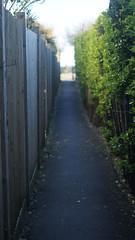 path (cloover4) Tags: sea green path narrow