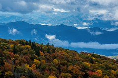 Fall (rjmerrill) Tags: mountians blueridgemountains blueridgeparkway fall fallcolors nikon d610 dslr
