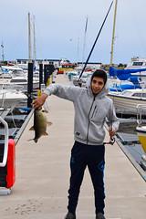 Marina - catching a bream (Maria Eklind) Tags: city fish water marina boats se skne sweden sverige bream fisk ystad brax skneln marinan ystadkommun