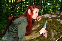 Tauriel (WBGPhotography) Tags: tauriel thehobbit bowarrow christiana elf lordoftherings woodlandelf