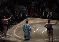 Sumo wrestlers before the fight in the ryogoku kokugikan sumo arena, Kanto region, Tokyo, Japan (Eric Lafforgue) Tags: people male men sport japan horizontal asian japanese tokyo big fight referee asia fighter martial wrestling fat traditional salt champion culture competition clash ring indoors tournament ritual leisure sumo inside strength athlete wrestlers adultsonly cultural overweight ryogoku 3people competitors kantoregion threepeople colourpicture 2029years japan161110
