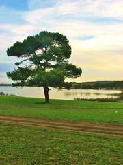 Laguna de los padres,Mar Del Plata,Argentina (Gabriel mdp) Tags: laguna padres reserva naturaleza paisaja landscape provincia buenos aires argentina verde green arbol