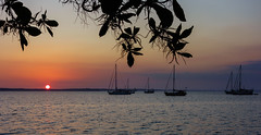 Cienfuegos Sunset (Dalliance with Light (Andy Farmer)) Tags: ocean sunset sea sky water silhouette boats harbor haze cu soft cuba sailboats tropics cienfuegos