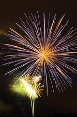 6959 fireworks (savedrev) Tags: 4thofjuly westlongbranch d7000 franklinlakenewjerseyfireworks nikon