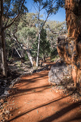 MacDonnell Ranges Stanley Chasm Northern Territory-4