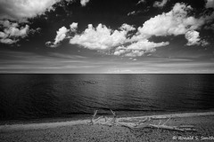 20160720 176b (Ronald S. Smith) Tags: fujixe1 fujixf1428 infrared michigan whitefishpoint blackandwhite monochrome