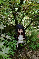 Blythe little bloody red wood OOAK Alixir (alixir1) Tags: crazydoll amazing funny drle mignonne amazingblythe funnyblythedoll cutiedollblythe cute kawaii blythe custom alixir pullip bloody red hood brh chaperon rouge fort