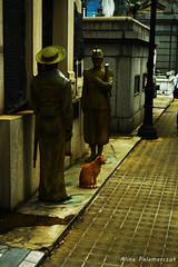Gato de guardia (vamos las bandas (volviendo muy de a poco)) Tags: gato cat cementerio cemetery recoleta mausoleo mausoleum soldados soldiers
