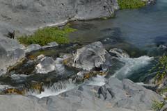 Gola dell'Alcantara (carlogalletti) Tags: taormina alcantara gola sicilia sicily carlog acqua