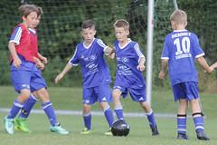 Feriencamp Neumnster 28.07.16 - b (66) (HSV-Fuballschule) Tags: hsv fussballschule feriencamp neumnster vom 2507 bis 29072016