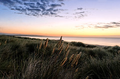 (jonathon lynam) Tags: sunrise blue yellow sea grass marrand clouds nikond40 nikon nikonphotography nikcollection wexford rosslare