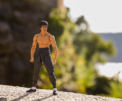 Bruce Lee (MadMartigen) Tags: brucelee shfiguarts bandai actionfigure