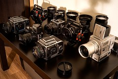 Hasselblad Collection (spiritusmentis) Tags: hasselblad 203fe 201f 903swc 500elm xpan arcbody 35mm 45mm 110mm f2 150mm f28 50mm 40mm f4 250mm teletessar sonnar planar grandagon rodenstock carlzeiss 20yearsinspace specialedition 6x6 slr dream cameras distagon