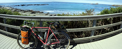 Sequoia (Franklyn W) Tags: biketour bikecamping bikeride touring touringbike california pacificcoasthighway hwy1 cahwy1 bigsur kirkcreek sansimeon cambria cayucos morobay morobaystatepark pacificocean