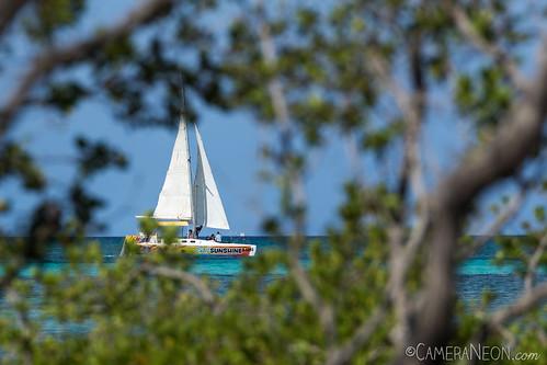 Aruba sunshine