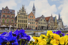 Flowers in Gand (Fil.ippo) Tags: old flowers houses panorama cityscape belgium center medieval historical fiori ghent filippo gand graslei d7000 filippobianchi