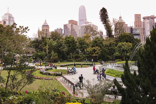 Thumbnail from Hong Kong Zoological and Botanical Gardens