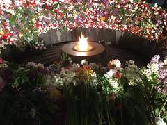 at the moment in Tsitsernakaberd (Alexanyan) Tags: museum memorial anniversary massacre empire armenia 100th april 24 ottoman 1915 yerevan genocide complex armenian armenien hayasdan