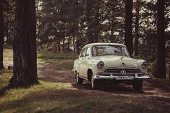 MH3O8220 (slava1302) Tags: history nature car automobile natural 21 union gaz retro historical volga sovietunion retrocar gaz21 sovietcar