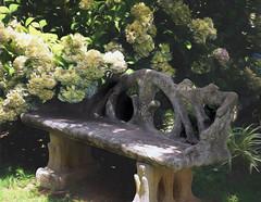 In the Garden - HBM (TuthFaree) Tags: elements garden stone bench flower hydrangea light shadow sunshine ga georgia hbm benchmonday