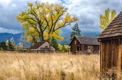 Twaddle Ranch Autum-017 (Linda Seibert) Tags: landscape barn fall field nevada twaddle ranch washoevalley bucolic