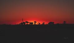 Hakuna matata. (Diego V - Fotgrafo) Tags: diegovelandoandrade diego vea velando andrade v atardecer colores rojo naranja