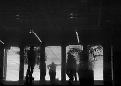 stuttgart (José Antonio Sáchez_) Tags: reflejo stuttgart aeropuerto personas blancoynegro luz sombra oscuro dark shadow