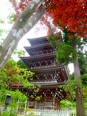 pagoda through the trees (citizensunshine) Tags: trees red tree tower japan temple pagoda maple buddhist buddhism japanesemaple jp aomori eaves honshu seiryuji seiryji