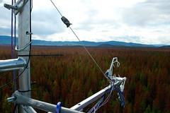 Kennedy Siding - Flux measurements above canopy (ubcmicromet) Tags: mountainpinebeetle britishcolumbia wind turbulence temperature climate fluxnet kennedysiding tower mountainpinebettle dendroctonusponderosae ubc theuniversityofbritishcolumbia