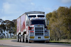 Baxters (quarterdeck888) Tags: trucks truckies transport australianroadtransport roadtransport lorry primemover bigrig overtheroad class8 heavyvehicle highway road truckphotos nikon d7100 movingtrucks jerilderietrucks jerilderietruckphotos quarterdeck frosty expressfreight generalfreight logistics overnightfreight highwayphotos semitrailer semis semi flickr flickrphotos baxters t909 kenworth roadtrain dropdecktippers glt tridolly grahamlustytrailers tipper