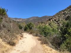 Solstice Canyon ((Jessica)) Tags: dry scrubbrush sun malibu solsticecanyon bluesky sunny trail pw california drought hiking santamonicamountains