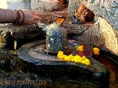 om namah shivaay... (Krins) Tags: shiv shivling abhishek water prayer om namah shivaay peace surrender immortality satyam shivam sundaram