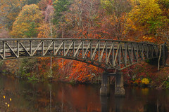 Plaid in Black & Red (stephenb19) Tags: loch faskally scotland pitlochry scottish highlands bridge water reflection mist drizzle rain misty foggy autumn autumnal fall season october november foliage orange deciduous yellow ochre umbre brown red leaves 2015 winter