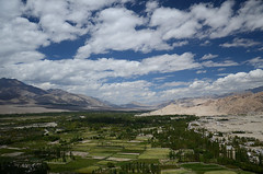 View from Thikse Gompa (dave beere) Tags: india ladakh buddism buddah monastery gompa