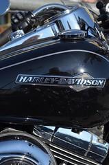 Original - Harley & Davidson Motorbike (eagle1effi) Tags: reflection spiegelung eagle1effi bike motorbike harley davidson motrorrad kunst art vinci original
