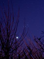 Venus-M45 (Fenna 2011) Tags: stars venus cluster m45 planet pleiades